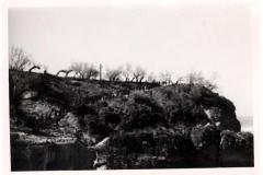 1945-dax-31